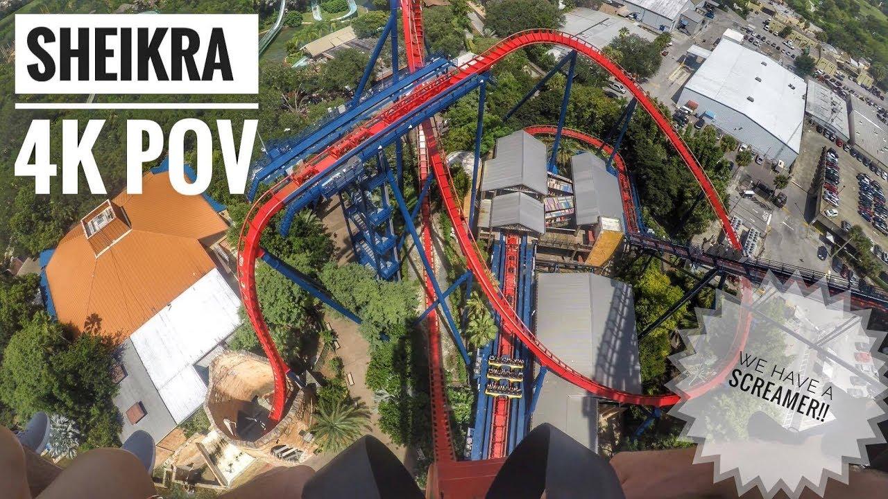 Sheikra Busch Gardens Tampa Bay On Ride Pov 4k Youtube