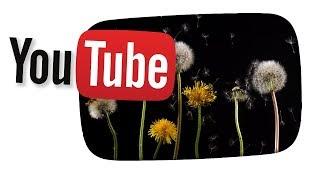Was ich mir von YouTube wünsche