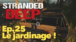 Stranded Deep  Let's Play Fr  - Ep.25 : Le Jardinage !