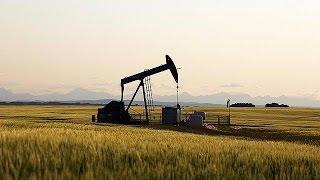 أسعار النفط ترتفع مجددا - economy