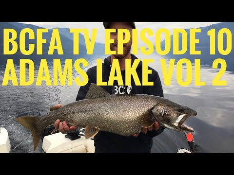 BC Fishing Addicts Episode 10- Adams Lake Fishing Volume Two