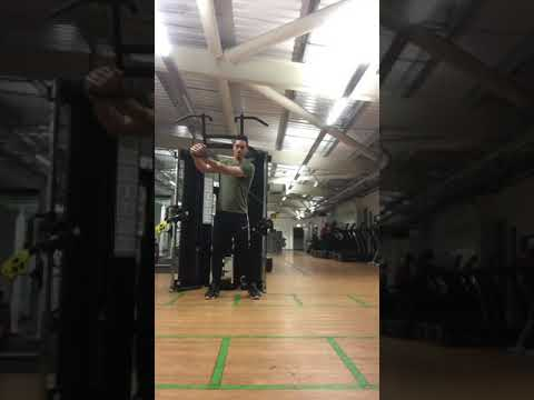 Cable Wood Chops (Golf fitness)