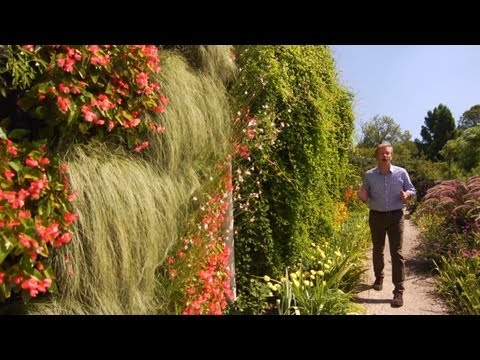 How to Plant a Living Wall | At Home With P. Allen Smith