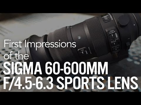 First Impressions: Sigma 60-600mm f/4.5-6.3 DG OS HSM Sports Telephoto Lens