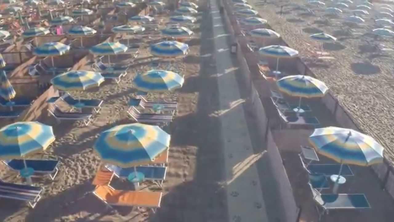 Rimini dog no problem la dog beach del bagno 81 - Bagno 81 rimini ...