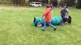 2016.10.9 星観緑地でアジリティの練習をするAnge。