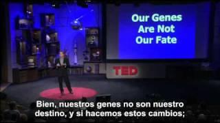 Nuestros genes no son nuestro destino: Dean Ornish en TED 2008