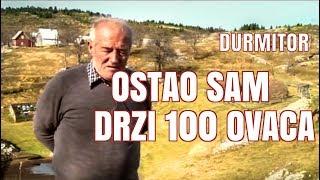 DURMITOR MALA CRNA GORA - DRZI 100 OVACA