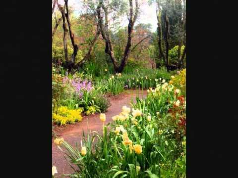 Giardini Della Landriana 0001 Youtube