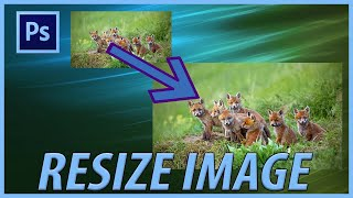How to Resize aฑ Image in Adobe Photoshop 2021 CC