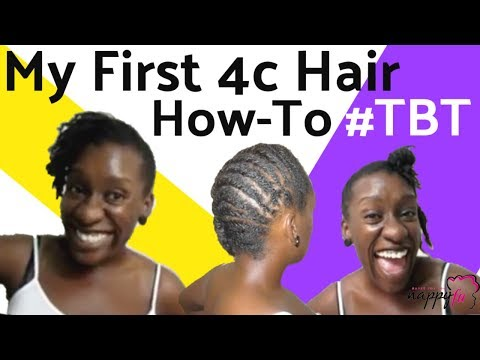 Throwback 4c Natural Hairstyle: Mini Twist Updo Sitting Sideways thumbnail