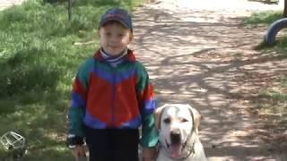 Как научить ребенка доминировать над собакой Джерри. Часть 2