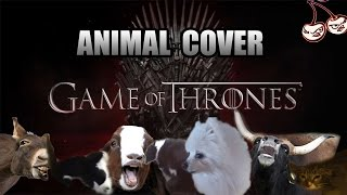 Baixar Game Of Thrones OST (Animal Cover)