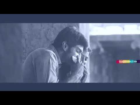 Alungura kulungura song status video
