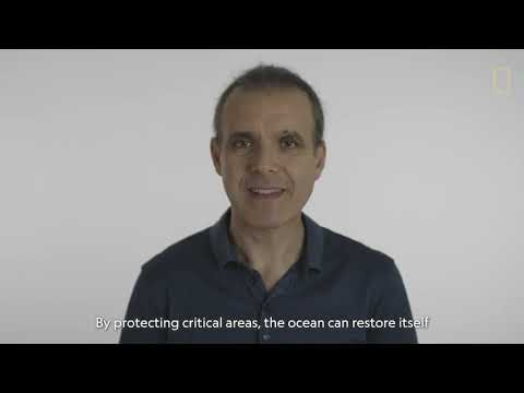 Pristine Seas: Safeguarding and Restoring the Ocean's Health and Productivity