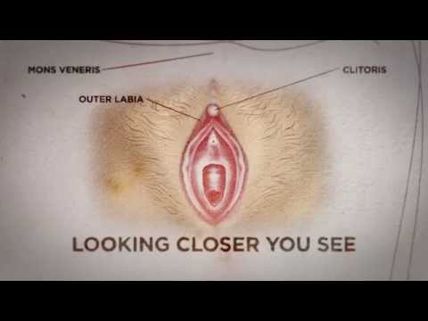 Can you see if a woman is a virgin? Here's the truth - Nyheterna (TV4) from YouTube · Duration:  1 minutes 45 seconds
