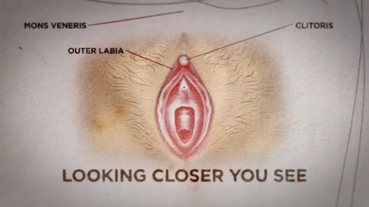 Can You See If A Woman Is A Virgin? Here's The Truth  Nyheterna (tv4)