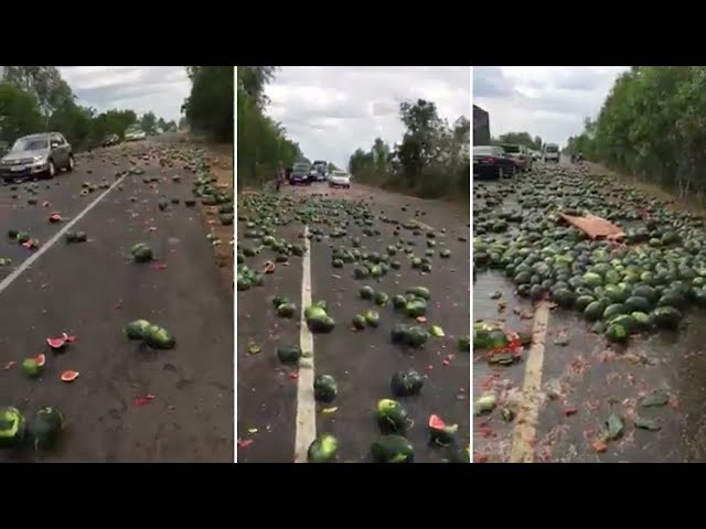 Hundreds Of Watermelons Spilled From Lorry