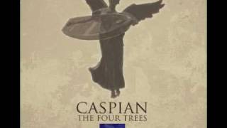 Caspian - Sea Lawn