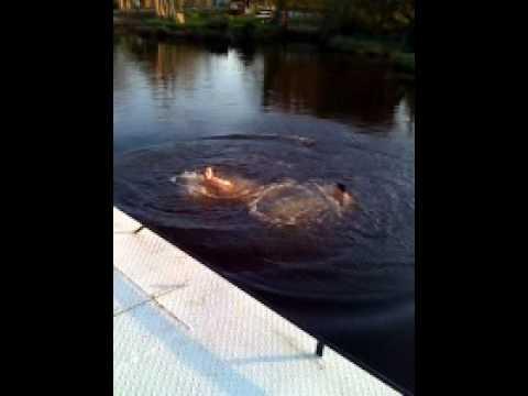 Bolger nd Ben swimming