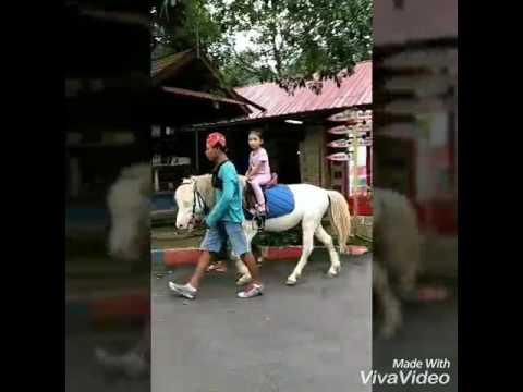 Holiday to johor zoo