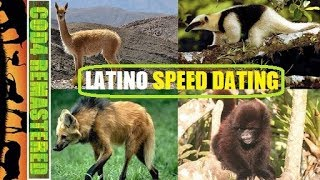 LATINO SPEED DATING (FINNTROLL 1984'S BEASTS OF THE WILD #59 ANIMAL OVERDOSE COD4 MW REMASTERED)