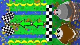Video MOPE.IO RACES TURKEY vs. EAGLE! NEW MINI GAME IDEA / Funny Trolling All Animals (Mope.io Gameplay) download MP3, 3GP, MP4, WEBM, AVI, FLV Januari 2018