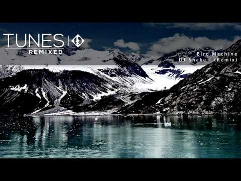 DJ Snake feat. Alesia - Bird Machine (Original Mix)