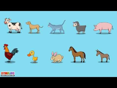 The Animal Sounds Song | Domestic Animals