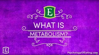 What Is Metabolism - with Emily Rosen