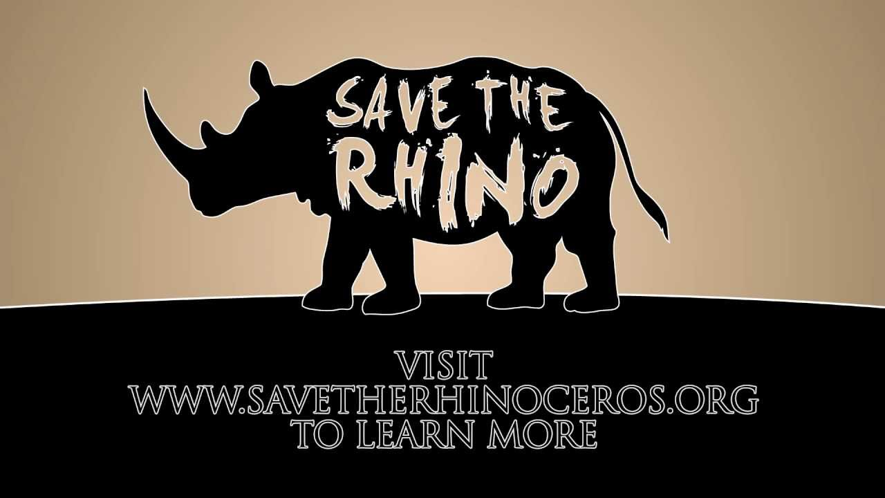 saving the rhinos Celebrate world rhino day with san diego zoo global and stacey johnson, our  director of collections he will share the horrific threats facing rhinos.