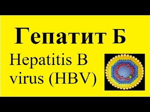 Гепатит В - болезни и лекарства