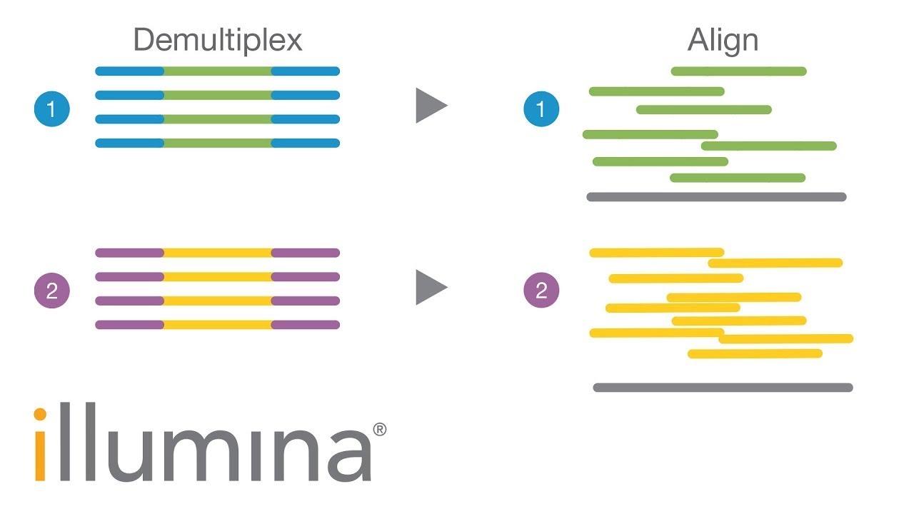 Minimizing Index Hopping