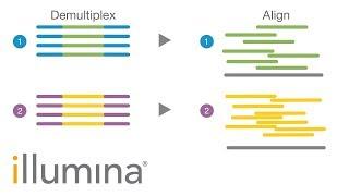 Insights into Index Hopping | Illumina Webinar