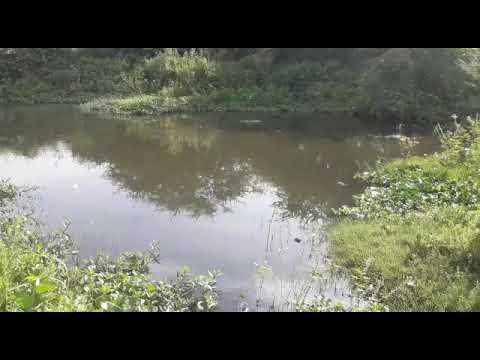 Lixo e esgoto invadem rio que abastece várias cidades na Paraíba