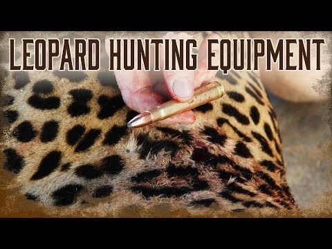 Equipment Needed For Leopard Hunting In Africa | 2