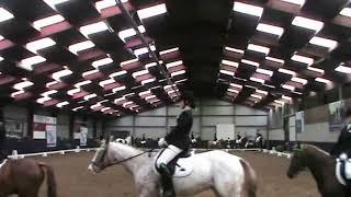 Pony carrousel 26 mei 2019, Nijkerkerveen