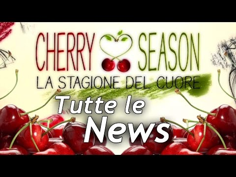 Cherry Season: News