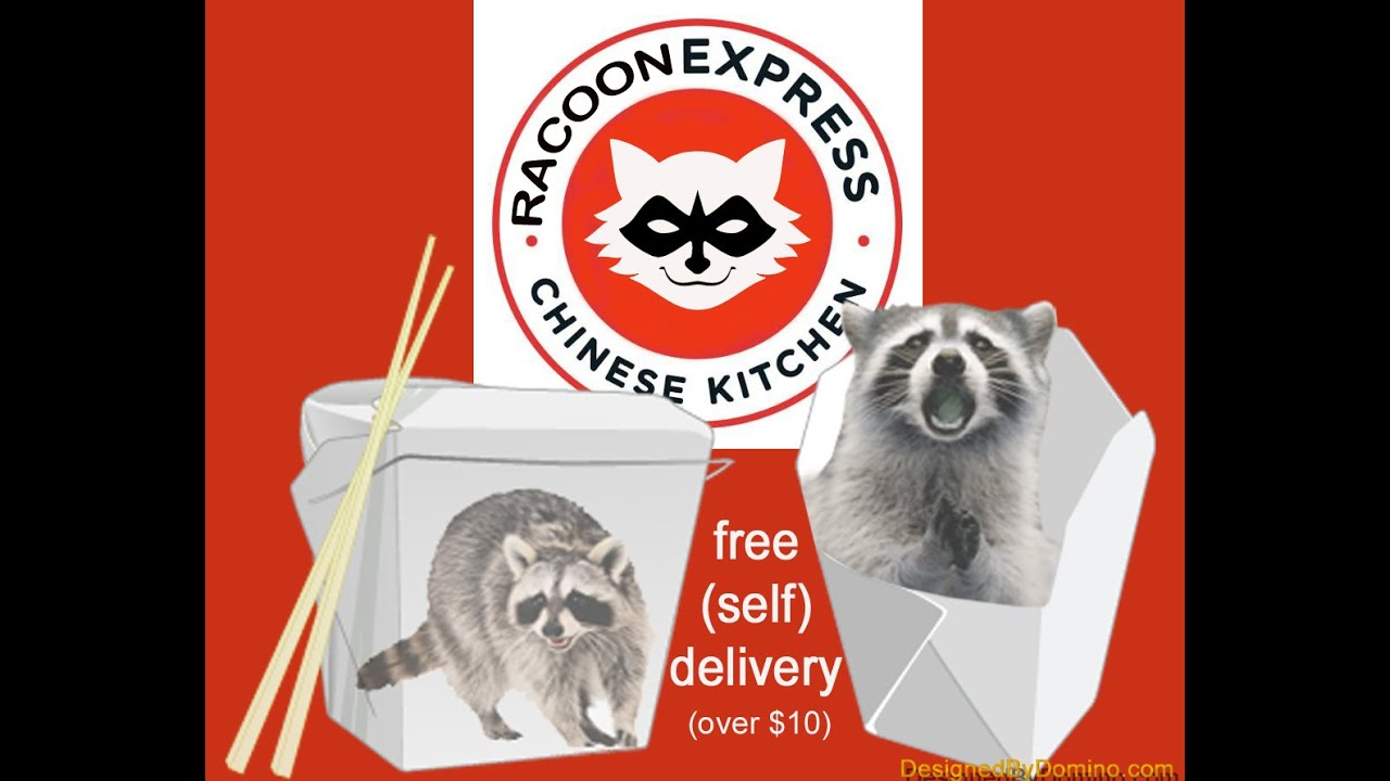 Rachet Raccoons in Chinese Food Take Out restaurant New York  Racoon Express