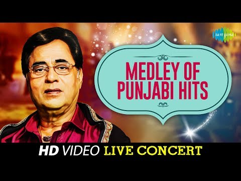 Medley of Punjabi Hits | Jagjit Singh | Live Concert Video