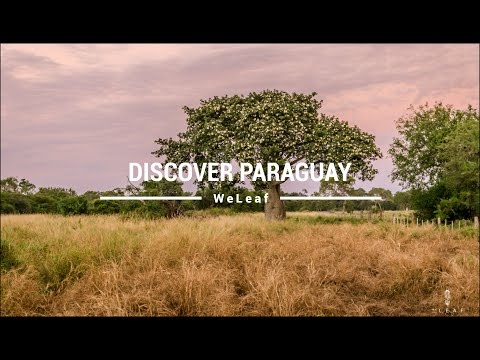 Discover Paraguay
