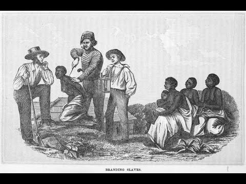 Asking how, what and why for Negroes_LE(1)
