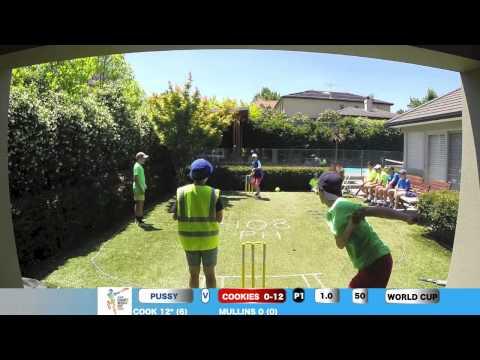 Backyard Cricket World cup game 4