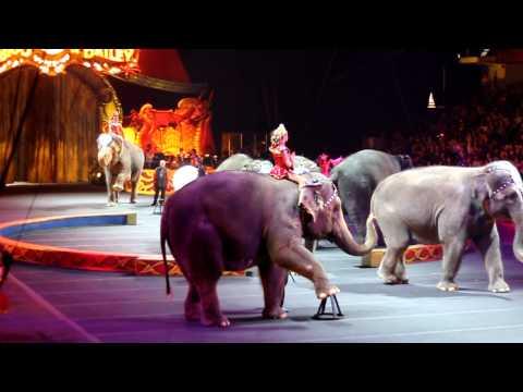 Barnum and Bailey Circus Shaolin and Elephant Act