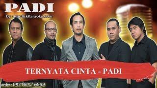 Download lagu TERNYATA CINTA   PADI Karaoke