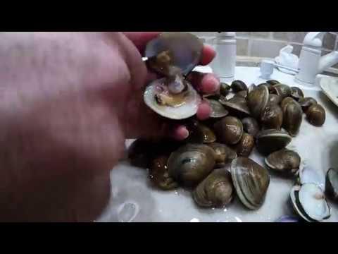 Sicilian Christmas Eve Seafood Dinner