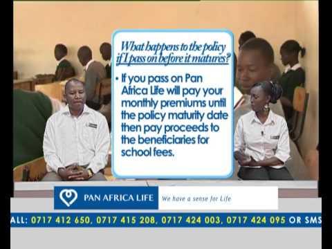PAN AFRICA LIFE INSURANCE