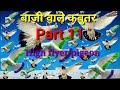 High flyer Pigeon. ACHE NASAL KE Kabutar ki pehchan kaise kre.Part.11