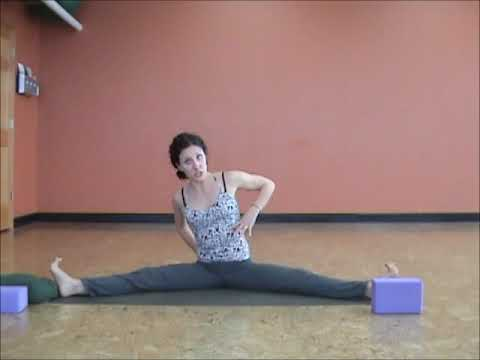 hatha yoga poses  beginner yoga poses with hope zvara