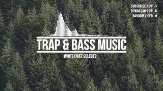 Trap & Bass Music Mix 2016   Make Trap Great Again
